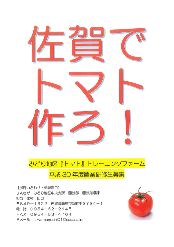training_farm_tomato